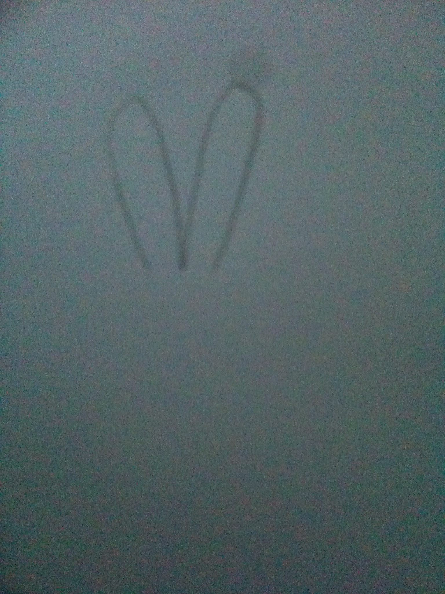 Picture of Draw the Ears