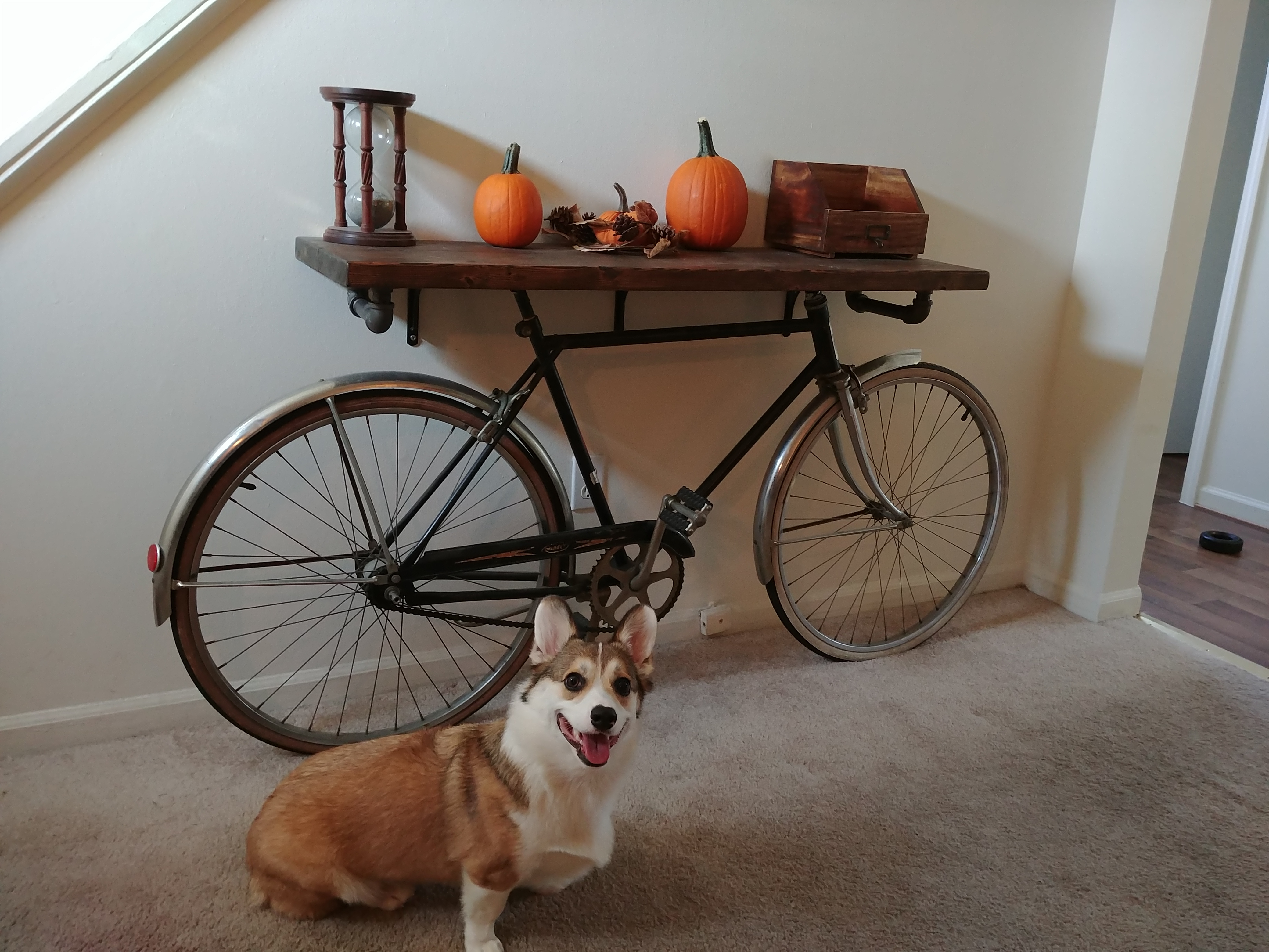 Picture of Bike Entry Table