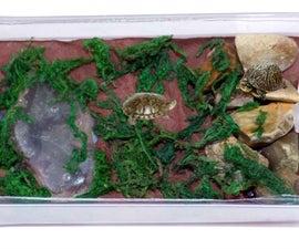 Diy Mini Turtle Terrarium