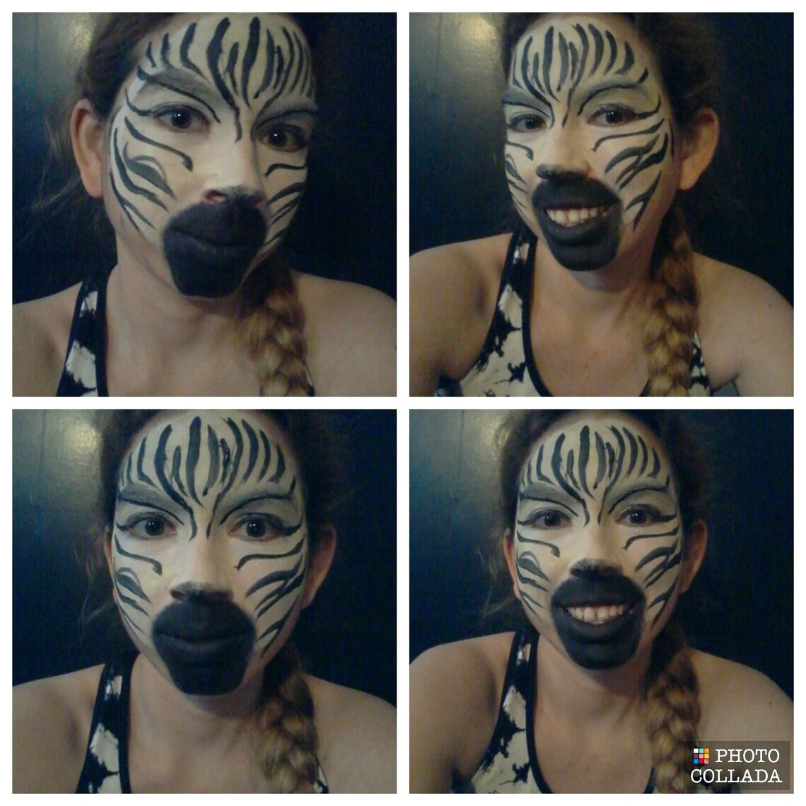 Picture of Zebra Face Paint