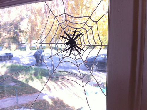 Picture of Sugru Spiderweb