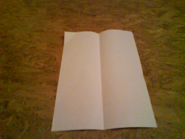 Picture of Paper Plane