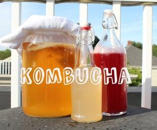 Double Fermented Kombucha