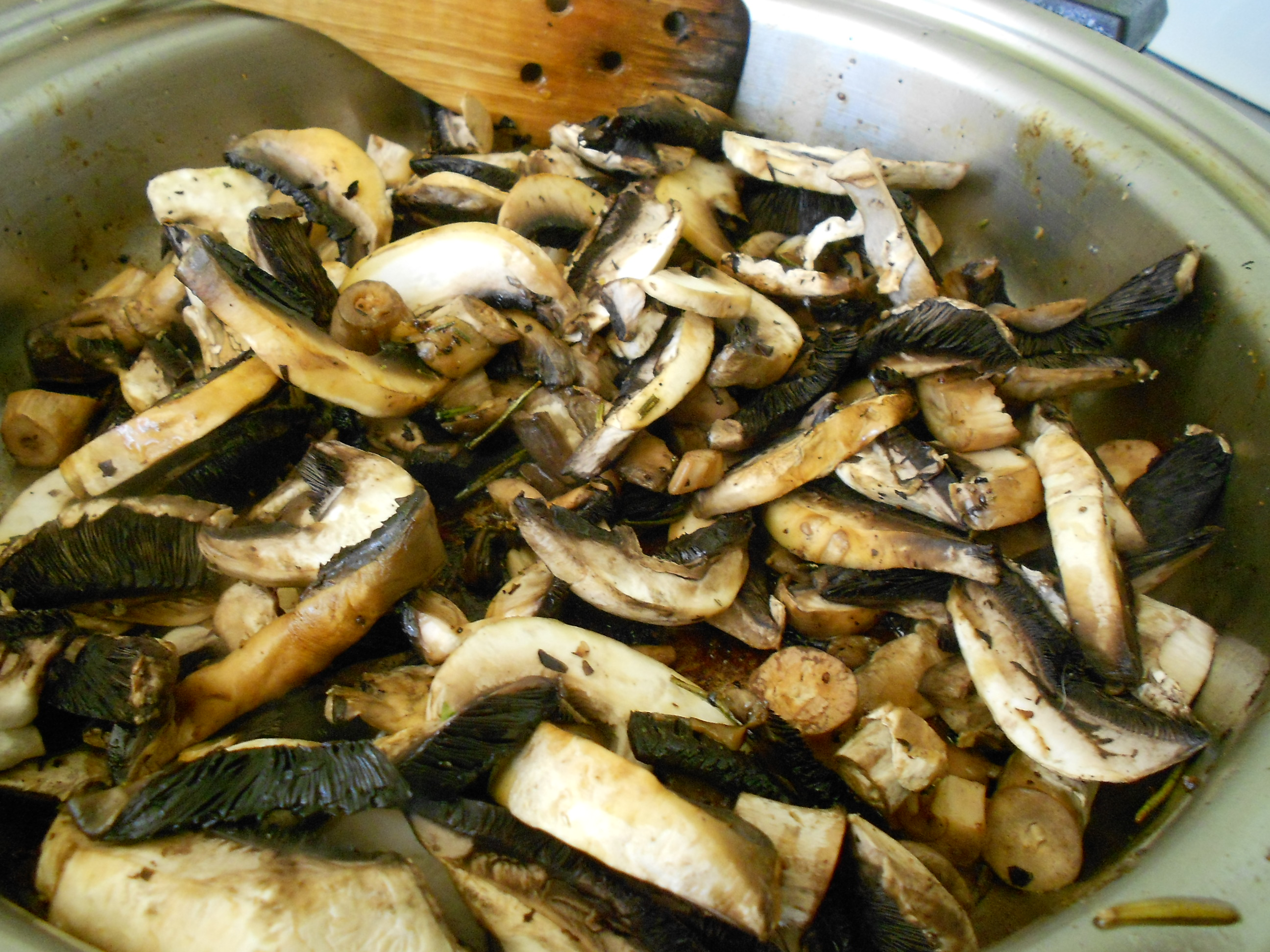 Picture of Mushrooms Gallore!!!