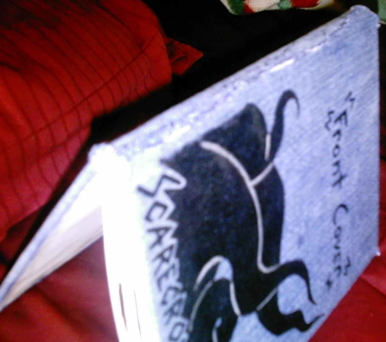Picture of Denim Book Cover