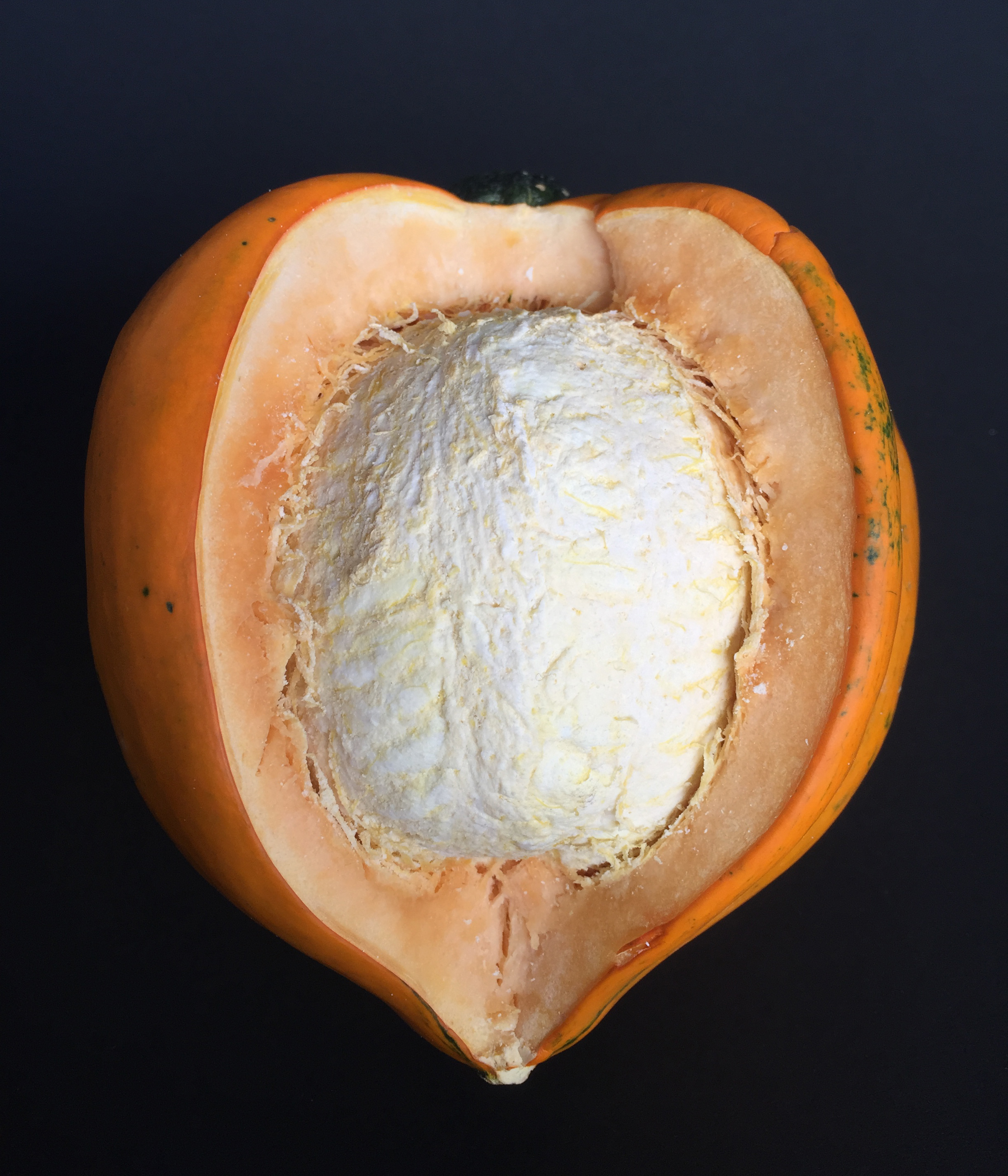 Picture of Cast the Inside of a Vegetable