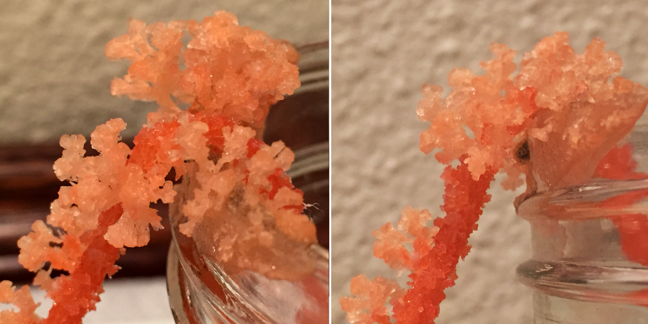 Picture of The Crystals Also Like Growing on the Edge of the Jars