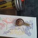 Snail Art: Making Art With Snails