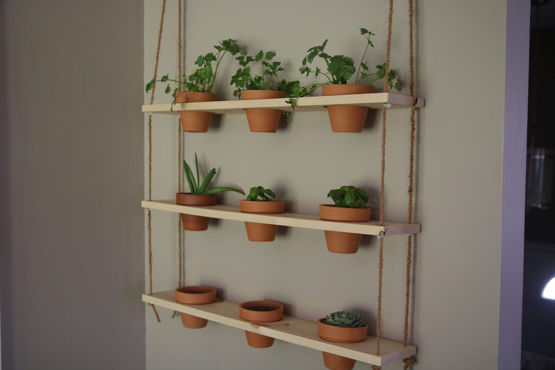 Picture of DIY Hanging Herb Garden
