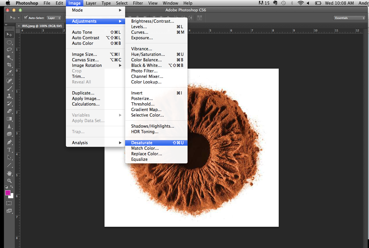 Picture of Importing and Adjusting File on Photoshop