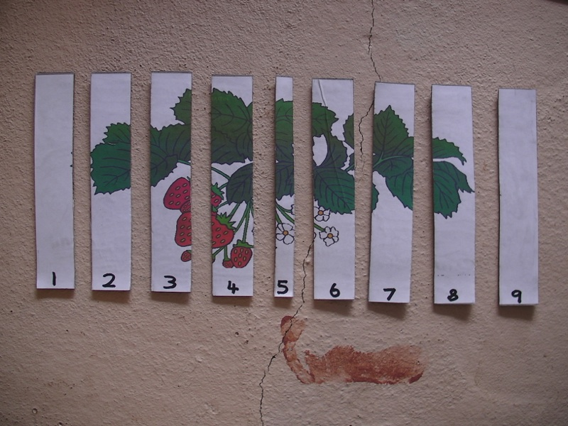 Picture of Numbered Sticks