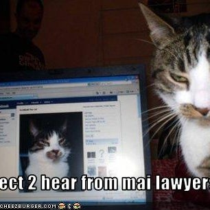funny-pictures-cat-threatens-you-with-lawyers.jpg