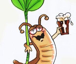 How to Make a Slug Trap