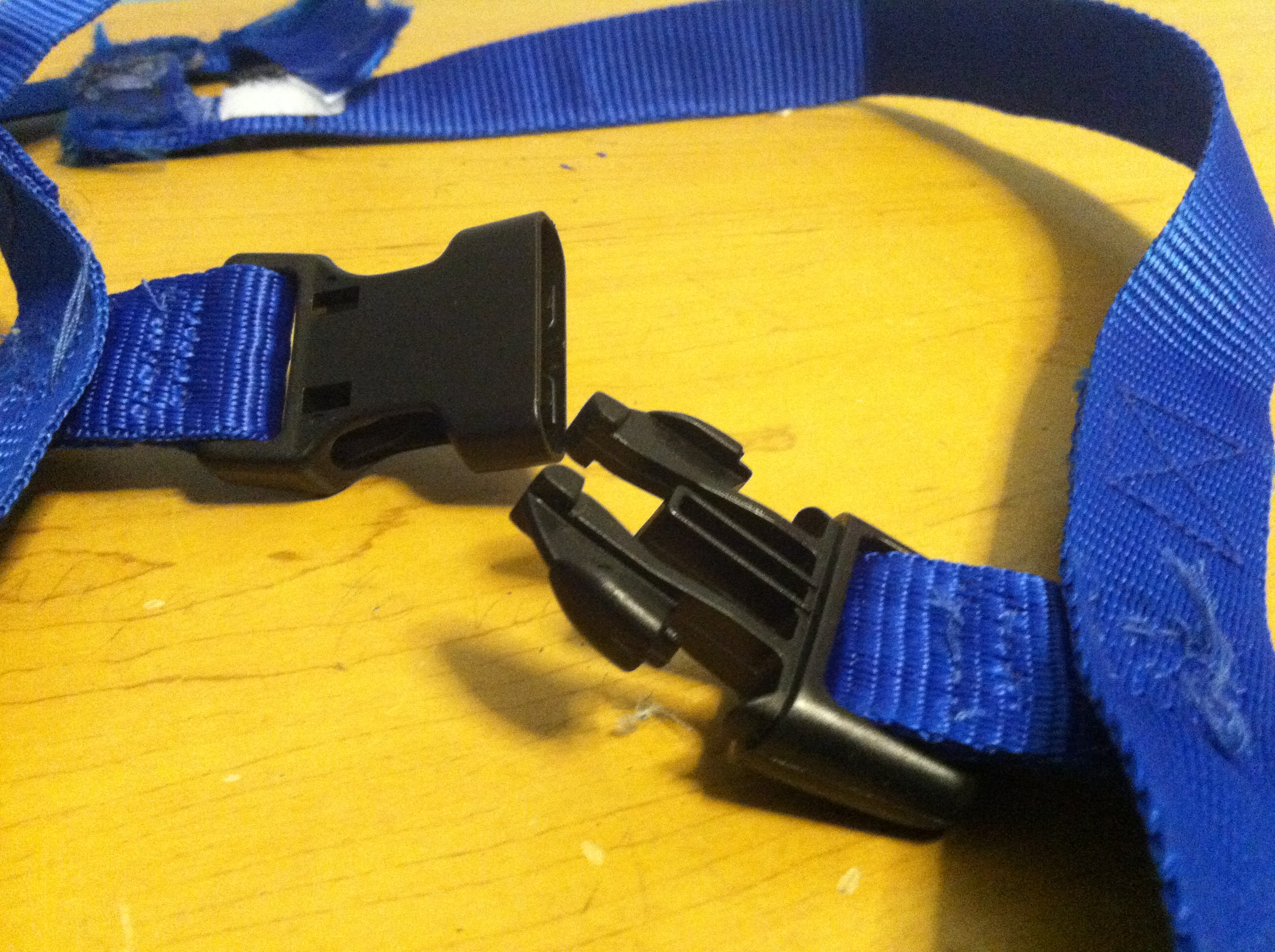 Picture of Harness