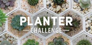 Planter Challenge