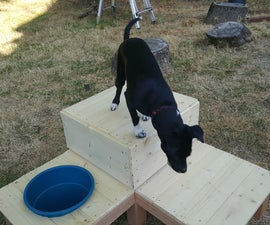 Outdoor Dog Platform With Water Fountain
