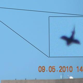 ufo 3.jpg