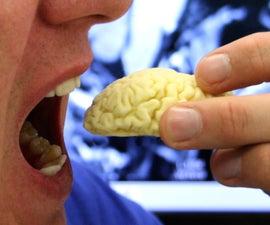 Edible Chocolate Brain from MRI Scan