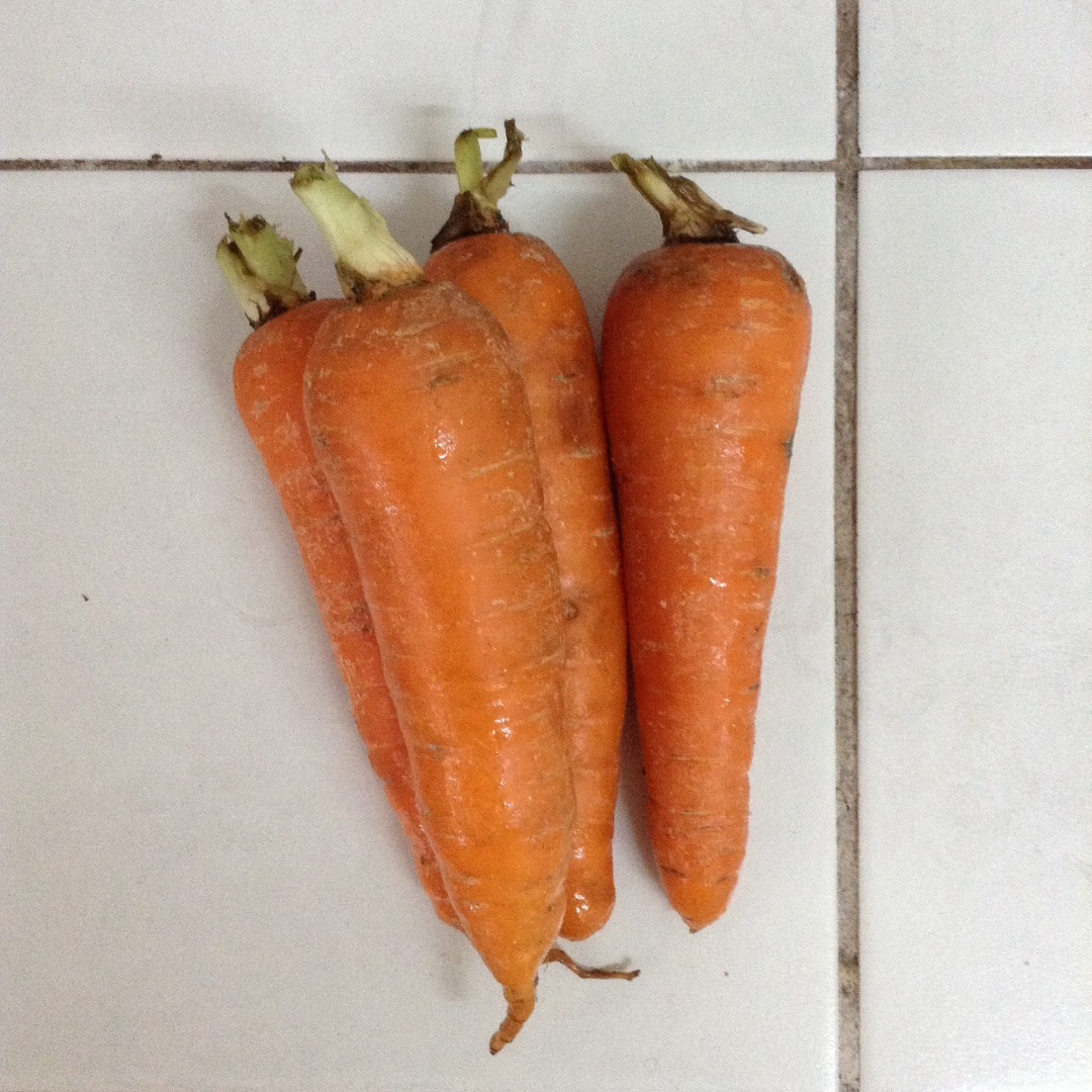 Picture of Baked Carrots