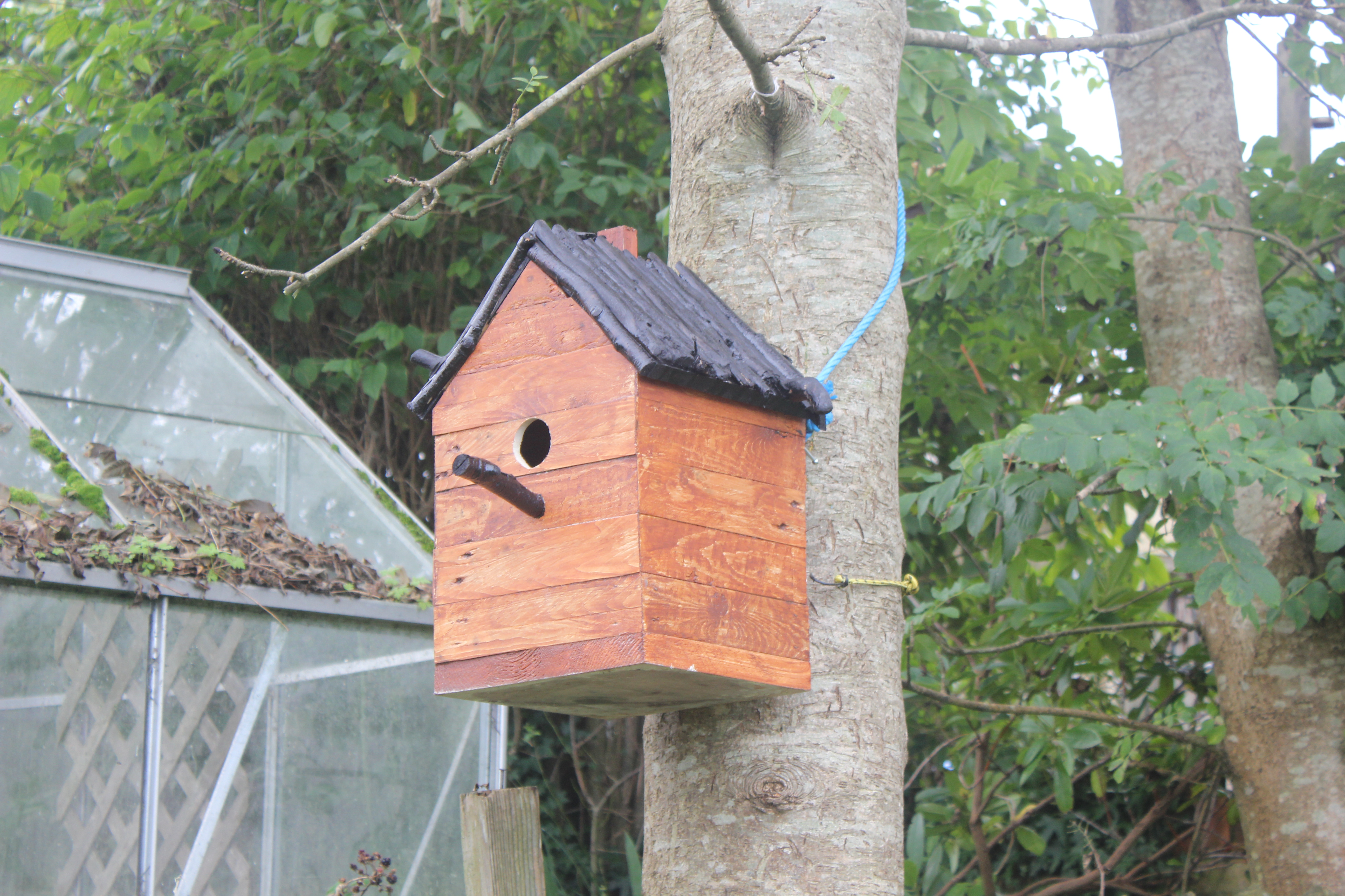 Picture of How to Build a Birdhouse From Pallets