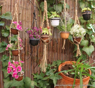 Mini Hanging Garden Out of Recycled Coffee Capsules