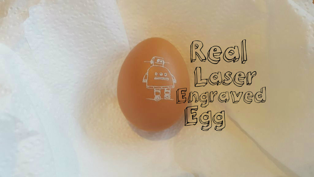 Picture of Real Laser Engraved Egg,