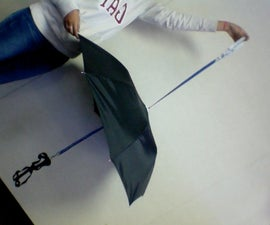 Doggie Umbrella