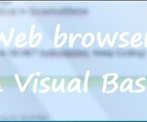 Creating a Program in Visual Basic: Web Browser