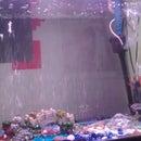 Cheap Aquarium Filter - Crystal clear water