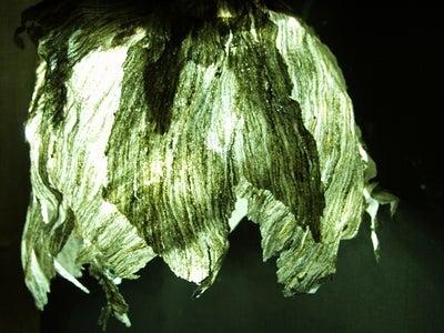 Hornets' Nest LED Light Cover