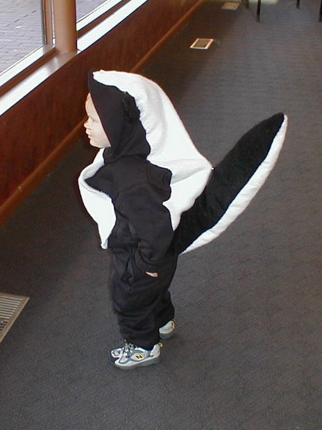 Picture of How to Make a Child Skunk Costume
