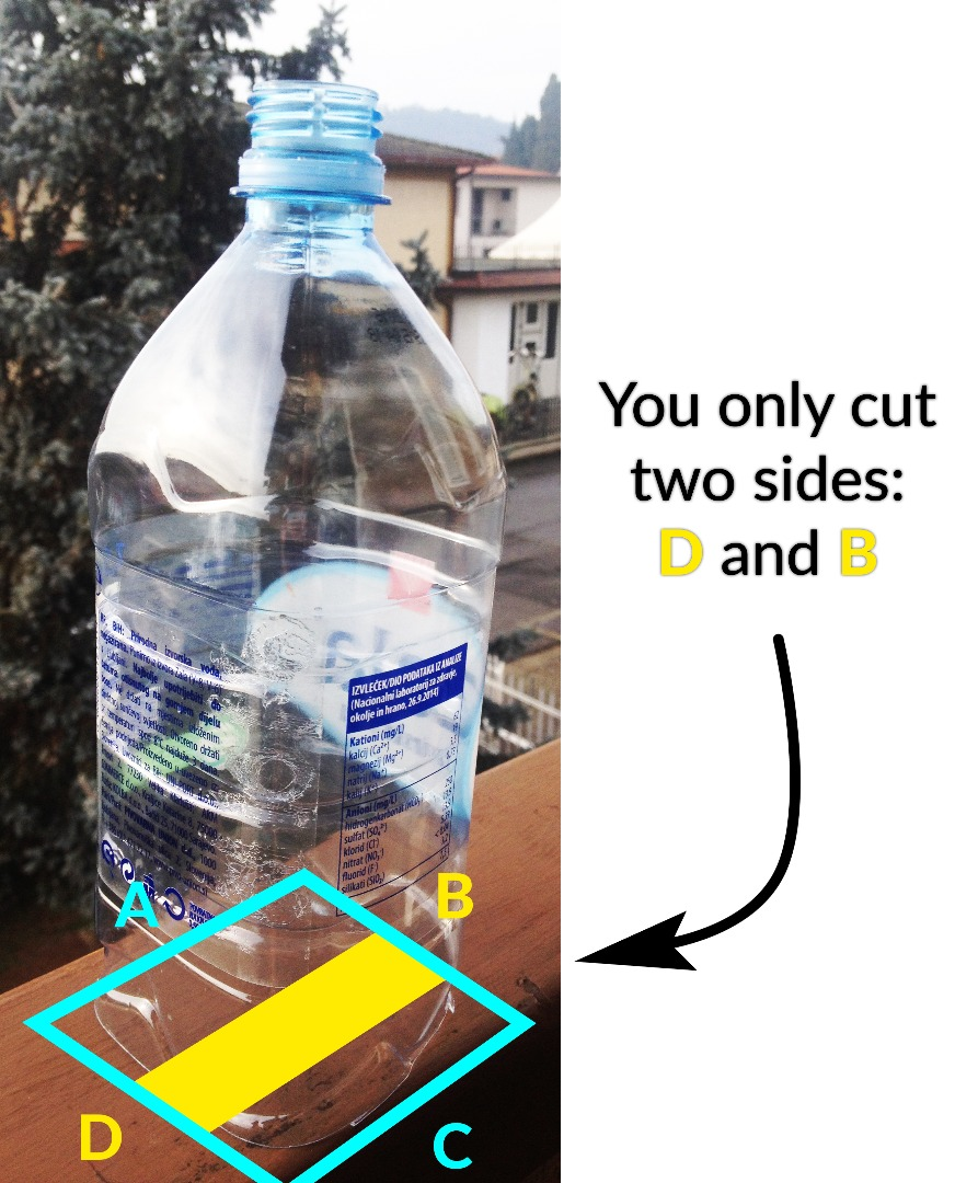 Picture of Cut the Bottom of the Bottle