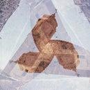 Costruzione Cavalletto a goniometro - Polygonal Frame