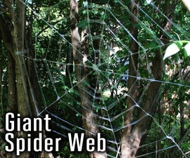 Giant Spider Web