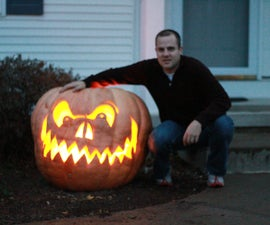 Giant Pumpkins make Giant Jack o Lanterns