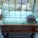 Aquarium pallet table - with wheels