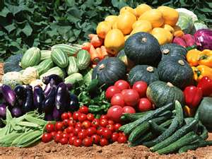 Picture of How to Grow Vegetable Plants!