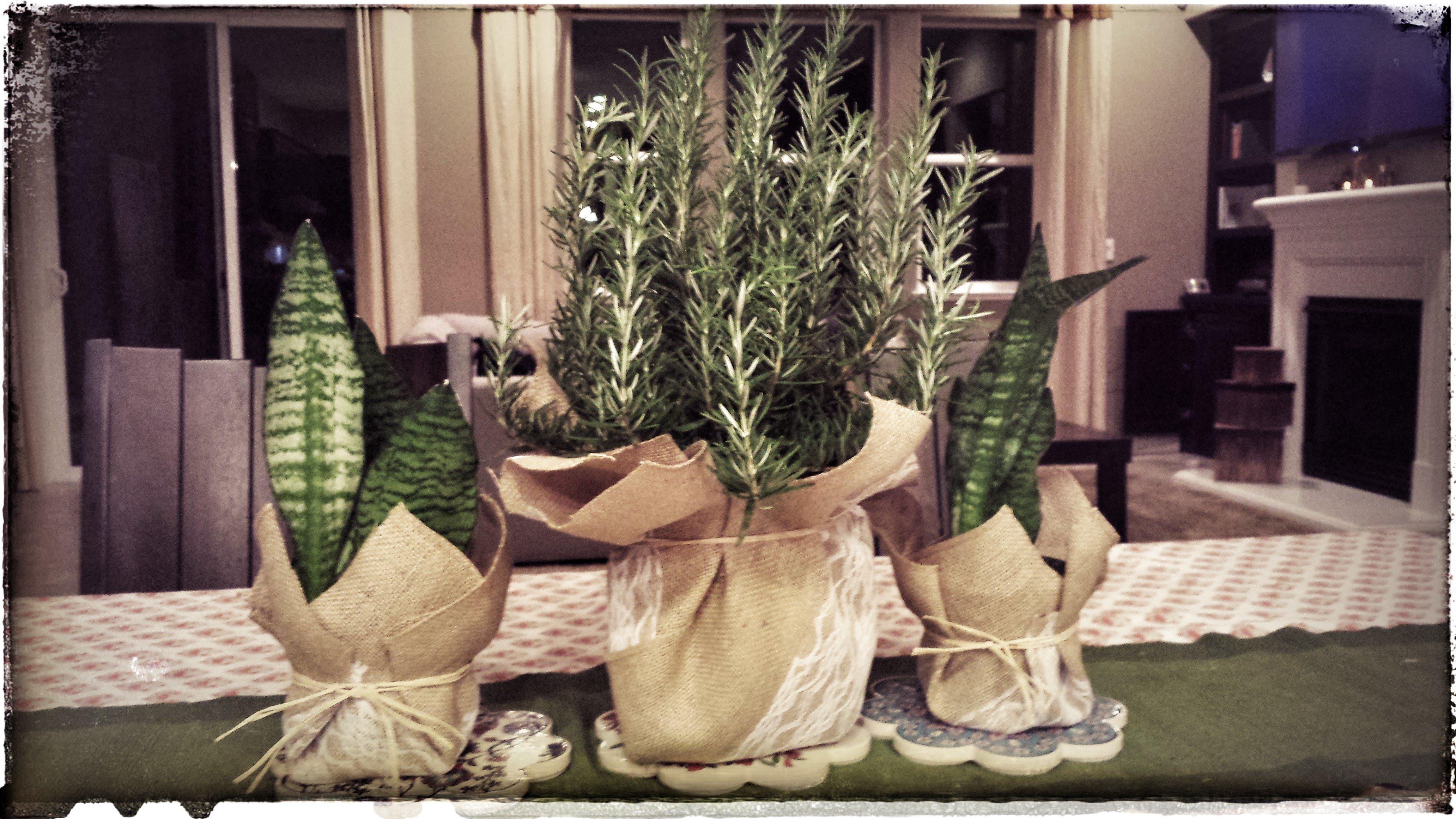 Picture of The Burlap Planter Cover