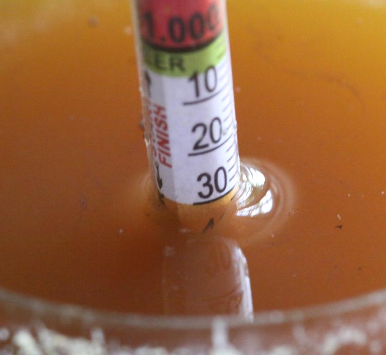 Picture of Pitch in the Yeast
