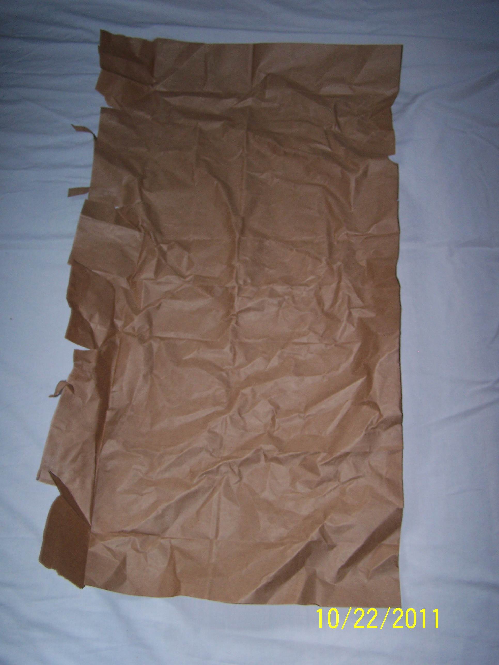 Picture of Cookie Costume- Opening the Paper Bag