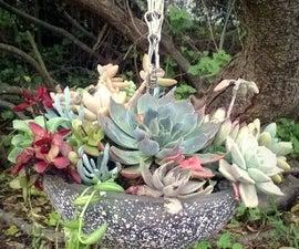 DIY Hanging Glass Succulent Garden
