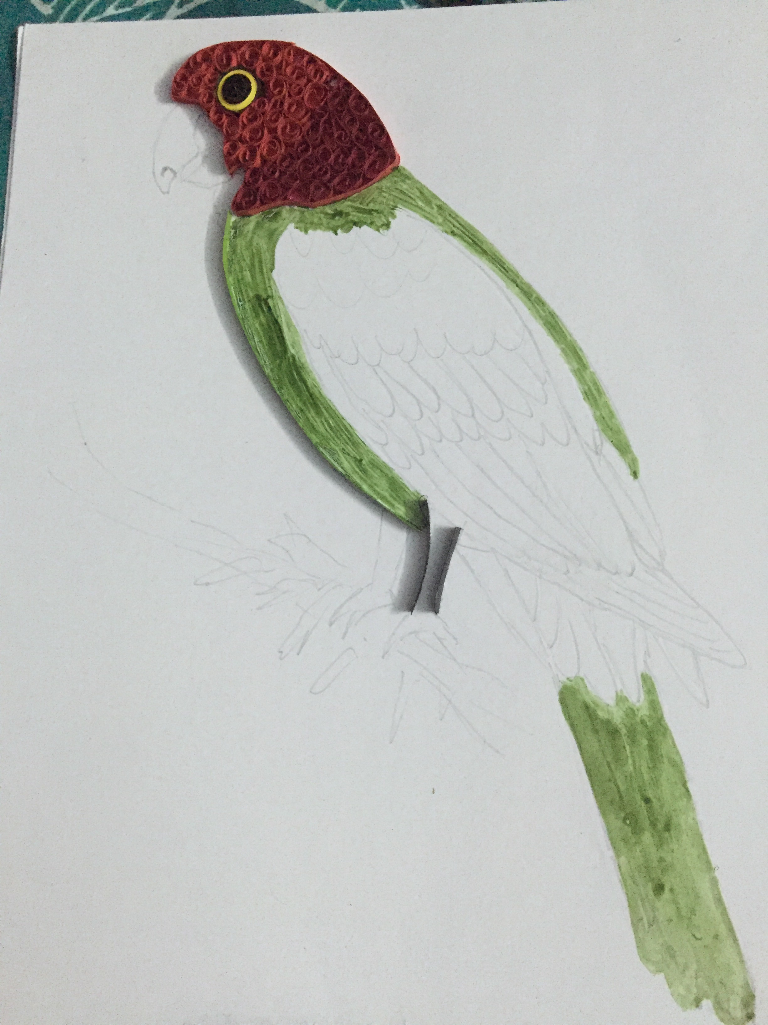 Picture of Quilled Parrot