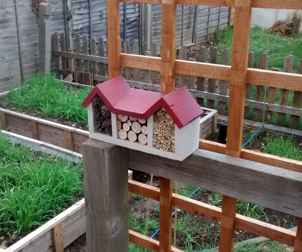 Insect/Bee House