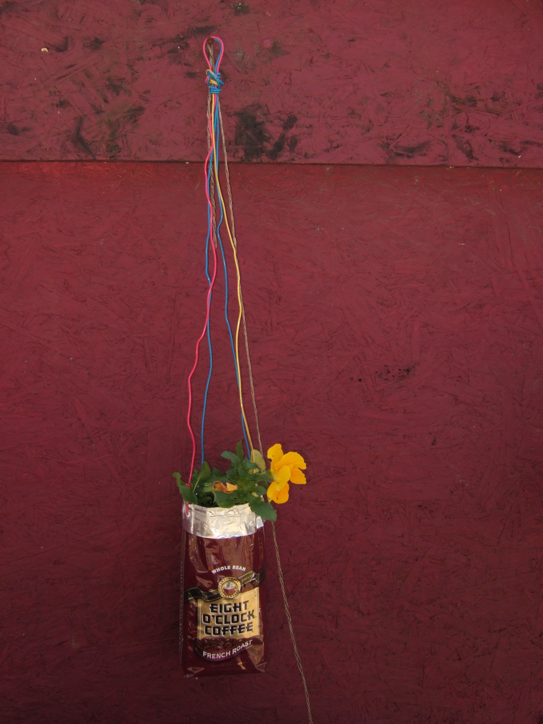 Picture of How to Turn a Coffee Bag Into a Hanging Planter.