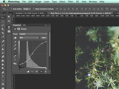 Create a Curves Adjustment Layer