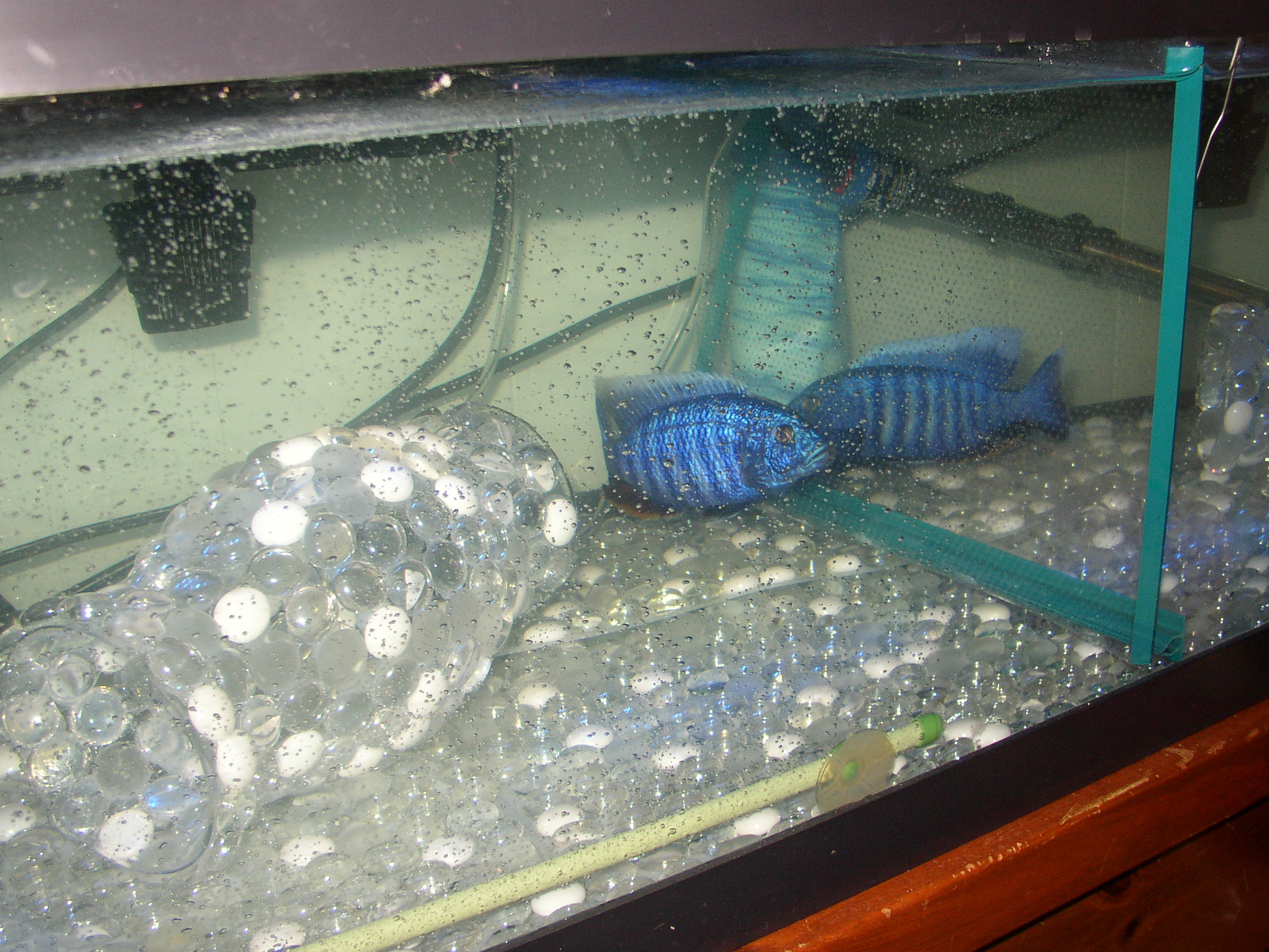 Picture of Aquarium Pebble Mats