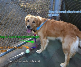 Canine ball leash (no more lost balls in the park!)