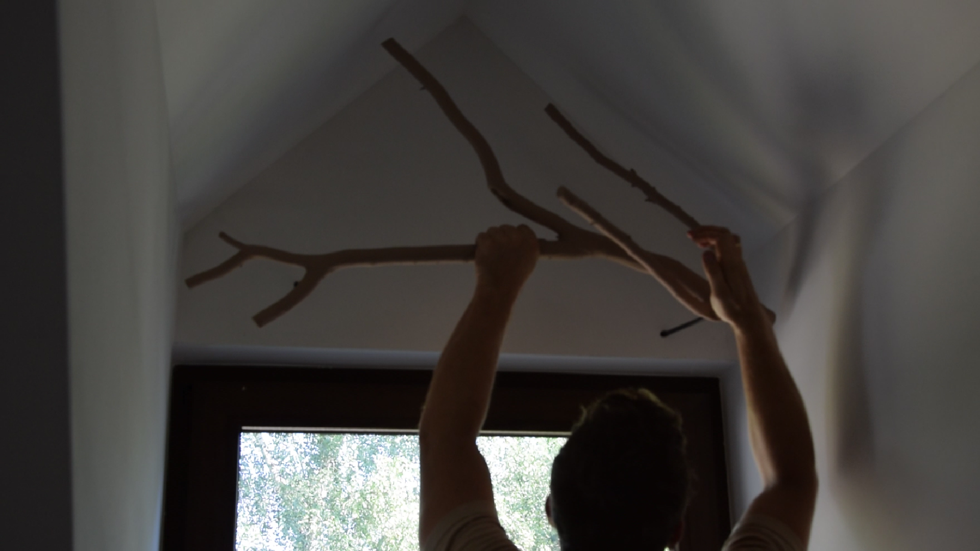 Picture of Hanging the Branch
