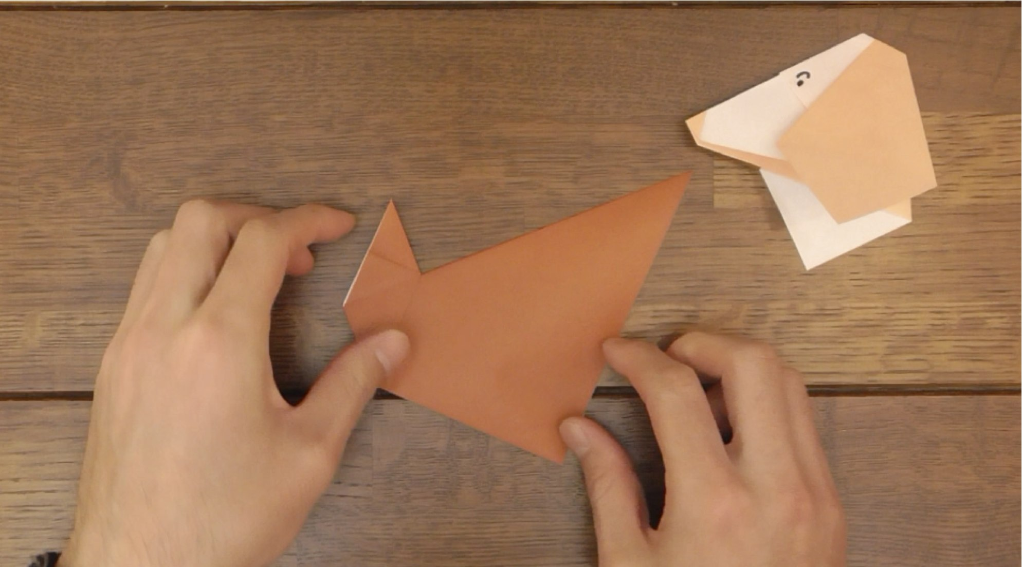 Picture of Fold Model