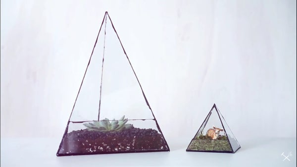 Geometric Terrarium Fail